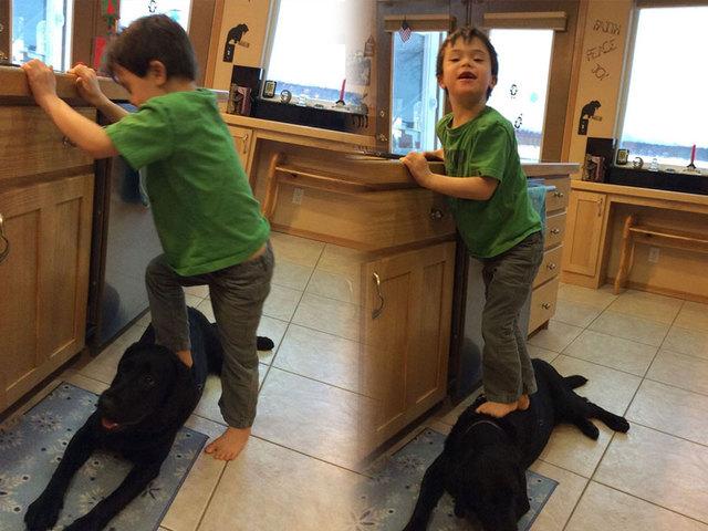 WPTV-Trig-Palin-stands-on-dog_1420391357013_12183420_ver1.0_640_480